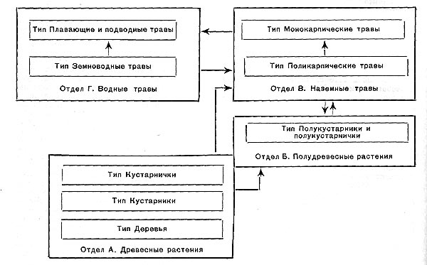 Соотношение отделов и типов